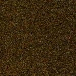 autumn_brown_cc